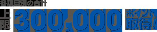 各項目別の合計上限30万ポイント取得
